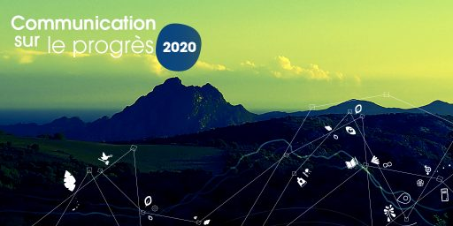 ITS Group publishes its Communication on Progress 2020